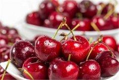水果进口需要什么手续及资质?超全!