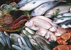 海鲜进口报关申报流程及所需资料