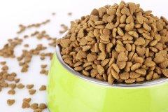 狗粮进口报关需要什么流程