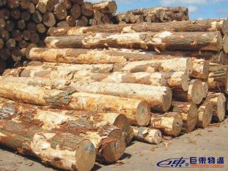 木材进口报关,木材进口报关代理,木材进口报关代理公司